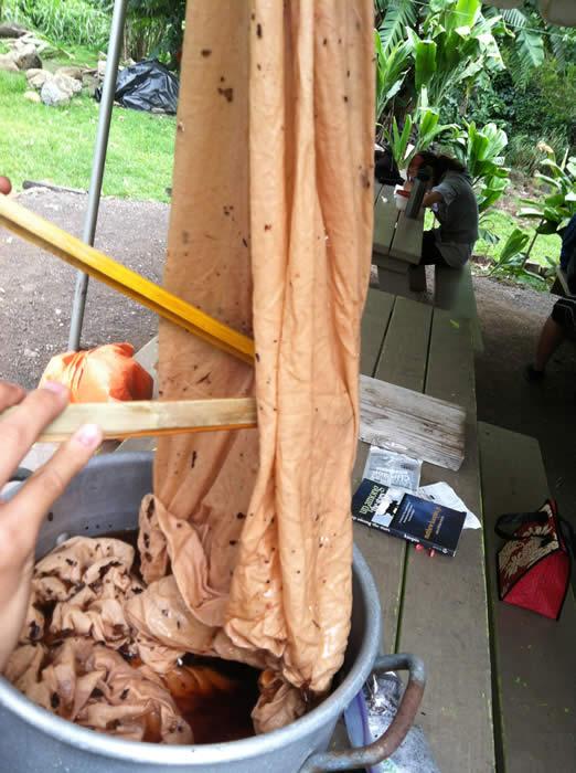 boiling kukui bark for dye