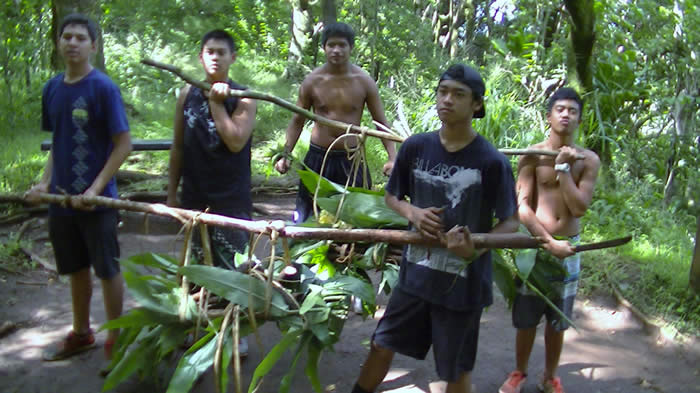 gathering kukui roots in forest